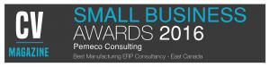 Pemeco Consulting - Best ERP Consultancy