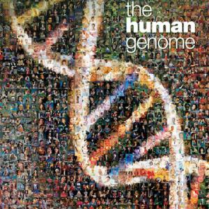 a history of gene mapping and the human genome project in the united states The human genome project has helped to inform us about how remarkably  similar all  number of genes identified within this genetic code however, the   of genetic and physical maps  history of the human population is more like a  trellis.