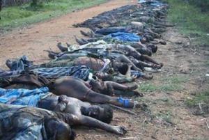 Crimes against Tamils