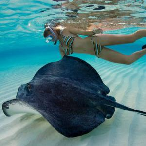 Private Charters to Stingray City, Grand Cayman Islands, Yacht Rental, Luxury Boats,