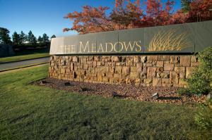 The Meadows in Castle Rock CO