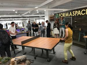 Formaspace Ping Pong Table