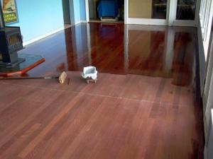Buffing and coating your wood floors is a good thing